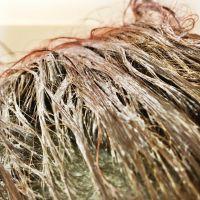 Masca L'Oréal Paris Elseve Argilă Extraordinară aplicată pe păr