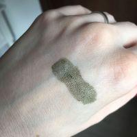 L'Oréal Make-up Designer Infaillible Eye Paint Swatch